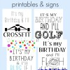 FREE Its my birthday printables