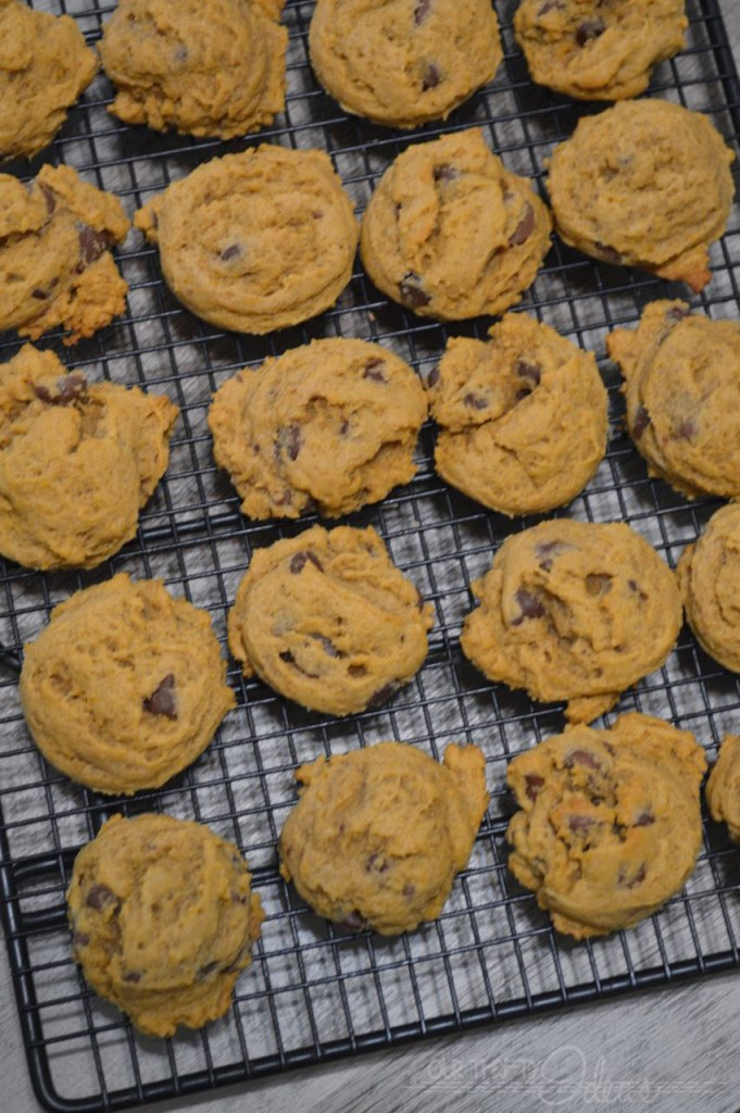 chewy pumpkin chocolate chip cookies - and you can freeze the dough and only cook a few cookies at a time!