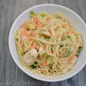 Family Friendly Chicken Chow Mein